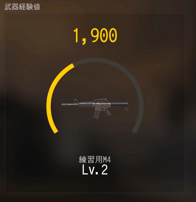 練習用M4もレベルが上がる?