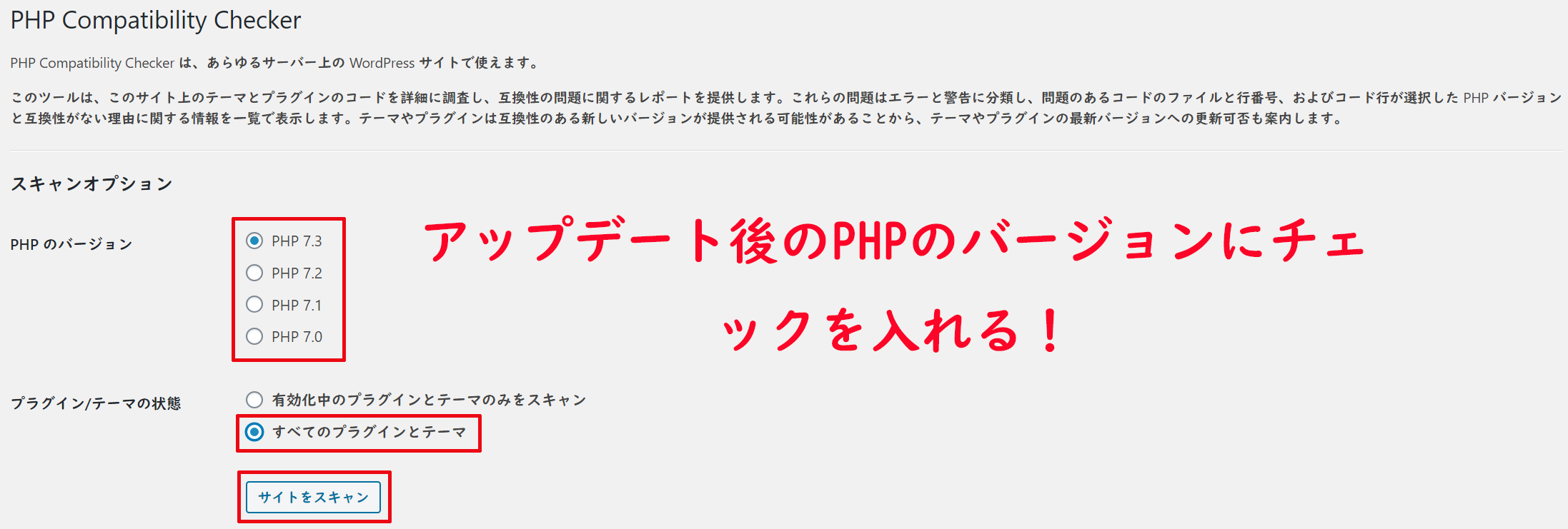 PHP 7.3とすべてのプラグインとテーマにチェックを入れ、サイトをスキャンをクリックする